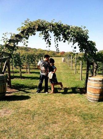 Galena Cellars Winery & Vineyard:                   Such a romantic getaway