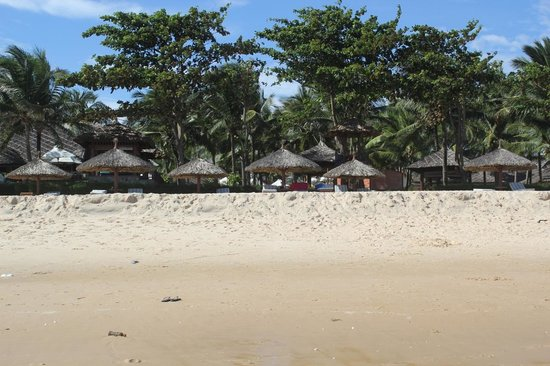 Blue Ocean Resort:                   Beachfront