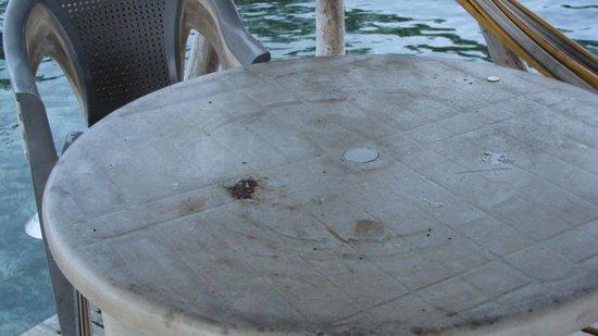 Bocas Villas:                   Common area dining room table