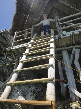 Spider House Resort:                   ladder into the water from the lobby
