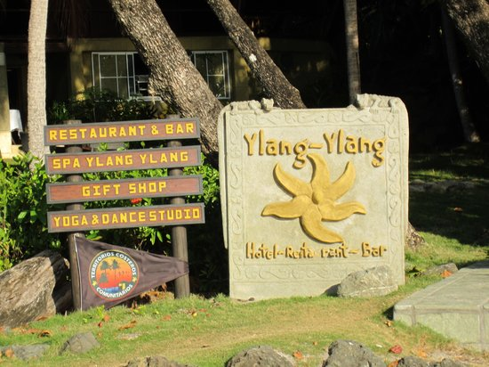 Ylang Ylang Beach Resort:                   The place to be in Montezuma
