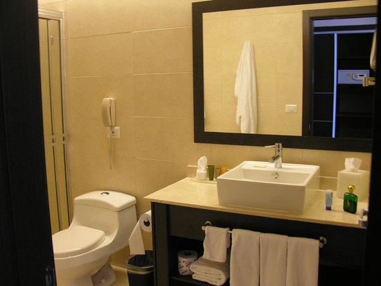 TRYP Panama Centro:                   The Contemporary Vessel Sink