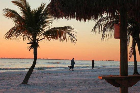 Tiki On The Beach:                   walkrs on the beach