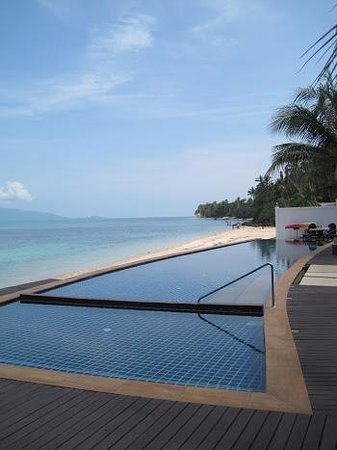The Lotus Terraces:                   infinity pool and beach