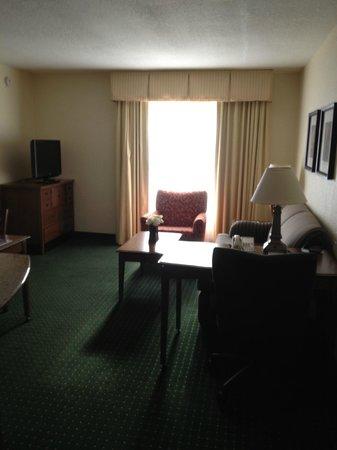 Residence Inn Daytona Beach Speedway/Airport:                   Living Room