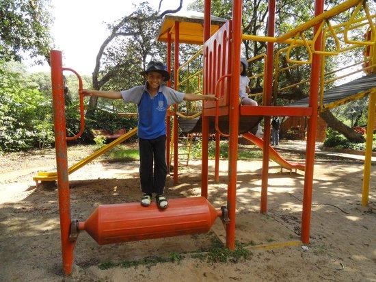 MTDC Holiday Resort Mahabaleshwar:                   Kids luv it