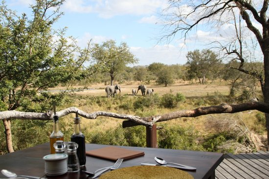 Simbambili Game Lodge:                   View from the Dining Area