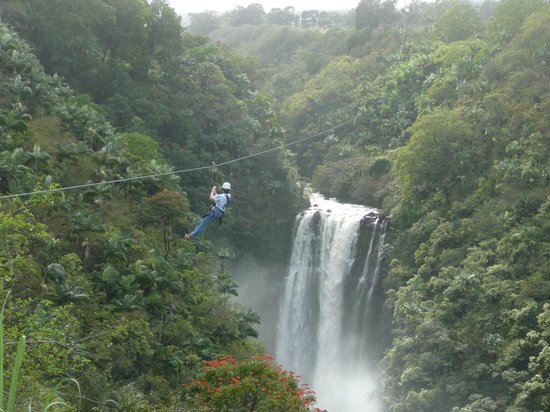 Skyline Eco Adventures - Akaka Falls:                   7th Zip