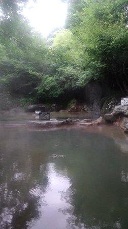 Hozantei:                   大浴場は湧水風呂つき