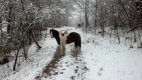 Rush Springs Ranch:                   Fun in the winter too