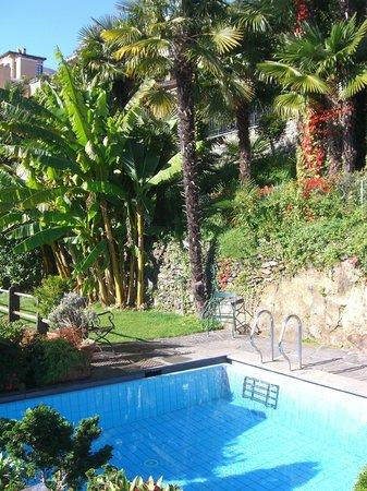 Art Hotel Riposo:                   unter Bananen schwimmen