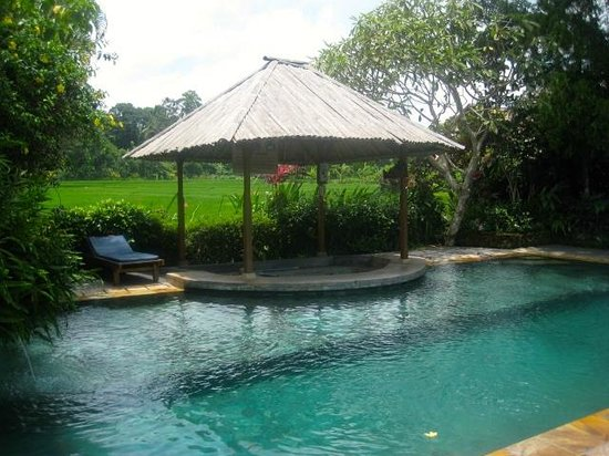 Tegal Sari:                   Wonderful Pool -- suitable for laps