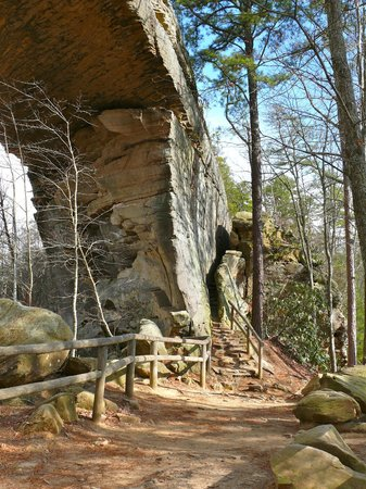 Natural Bridge State Resort Park:                   The narrow path