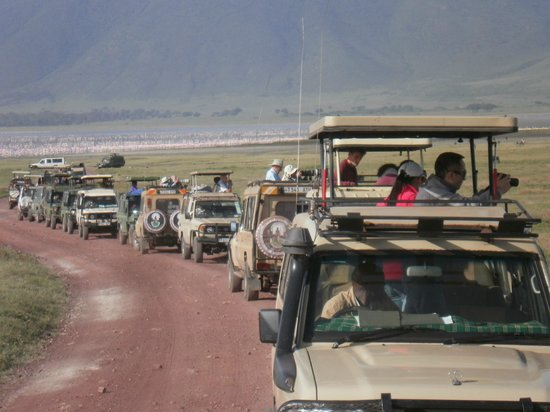Serengeti Sange Safari -  Day Tour