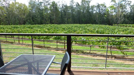 Hermitage Lodge:                   Beautiful and quiet looking out over the vines