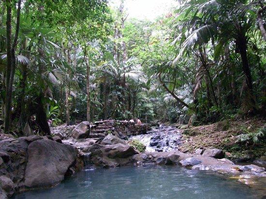 Termales del Bosque:                   温泉
