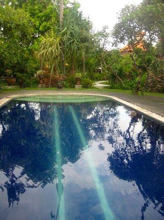 Kendi Mas Hotel:                   Kendi Mas Pool