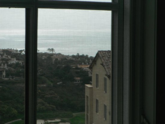 Marriott's Newport Coast Villas:                   My bedroom view!