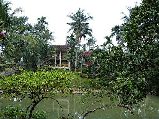 Hotel Deli River:                   территория отеля