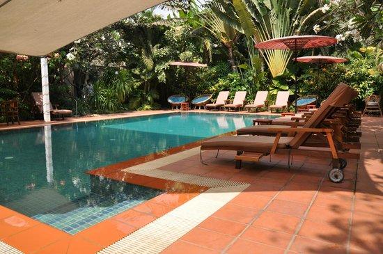 The Villa Paradiso:                   Pool paradise