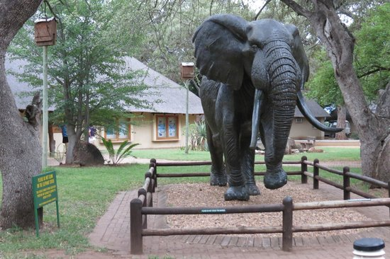 Letaba Rest Camp:                   Restcamp Letaba