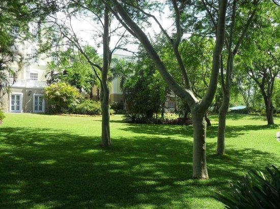 Southern Sun Emnotweni:                   Peaceful garden.
