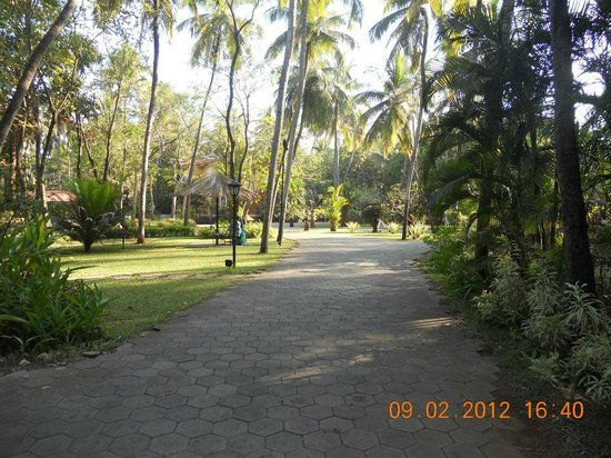 Vivanta by Taj - Holiday Village, Goa:                   Morning Walk
