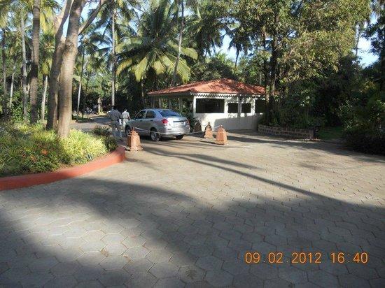 Taj Holiday Village Resort & Spa:                   Morning Walk