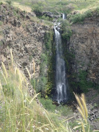 Katzrin:                   The highest waterfall in Israel
