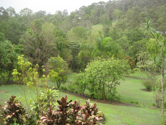 Eumundi Rise Bed & Breakfast:                   Backyard View from Verandah