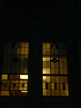 University of Washington gothic windows of the library at night