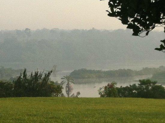 Nile Horseback Safaris - Day Tours :                   Morning mist Holland Park