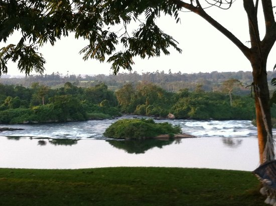 Nile Horseback Safaris - Day Tours :                   View from the Haven