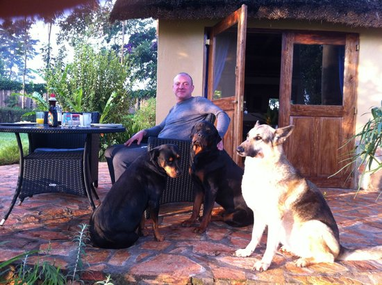 Nile Horseback Safaris - Day Tours :                   We loved their dogs and they loved us back!