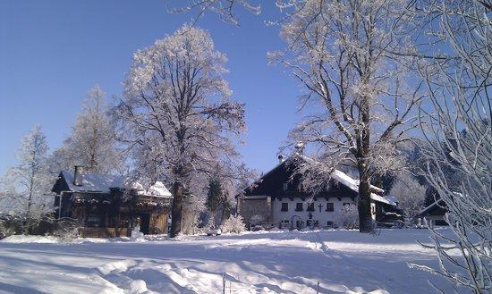 Gasthof-Pension Erentrudisalm:                   Erentrudisalm im Winter