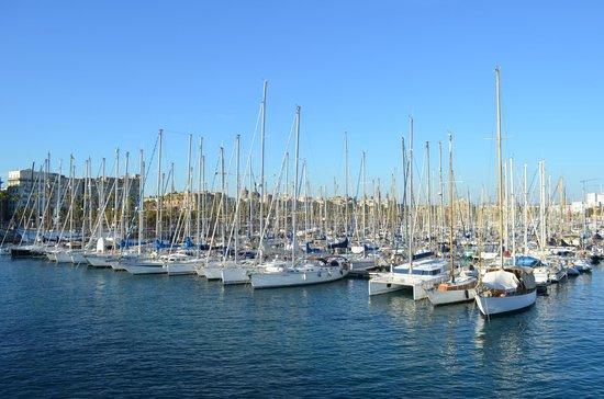 Business Yachtclub Barcelona:                                     Port Vell
