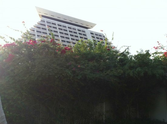 Sheraton Grand Doha Resort & Convention Hotel:                   Hotel view from garden
