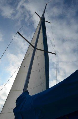 Business Yachtclub Barcelona:                                     SEgelboot