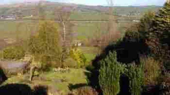 Browside Farmhouse: Gardens