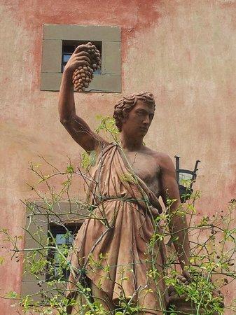 In the gardens - Vignamaggio
