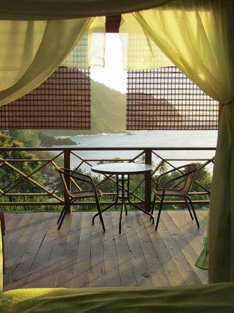 Carpe Diem Villa:                   view from the green room