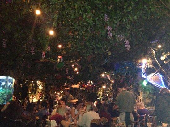 Waterfall picture of rainforest cafe london tripadvisor for Rainforest londra