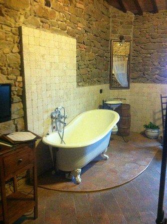 Il Cantico della Natura:                   vasca d'epoca in camera