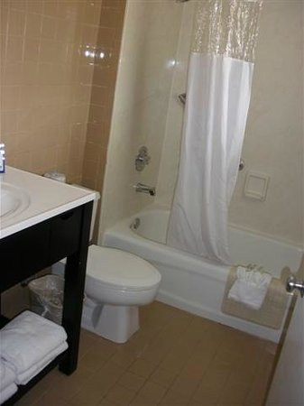 BEST WESTERN Hibiscus Motel:                   Modern bathroom