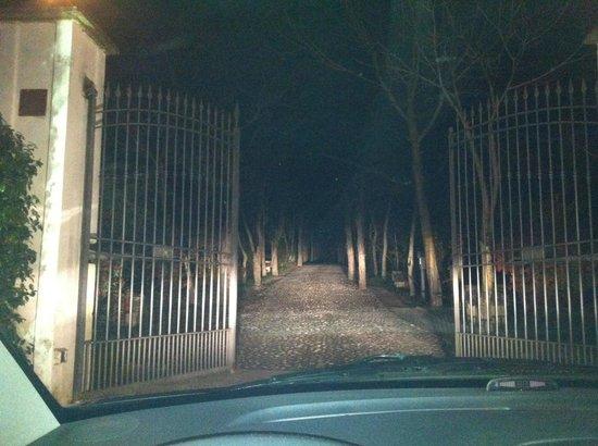 Villa Rizzo Resort & SPA:                   Il Vialone alberato