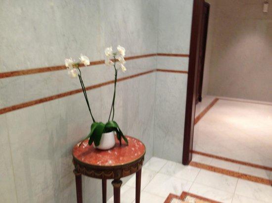 Hotel de Paris Monte-Carlo :                   Phalaenopsis in abundance