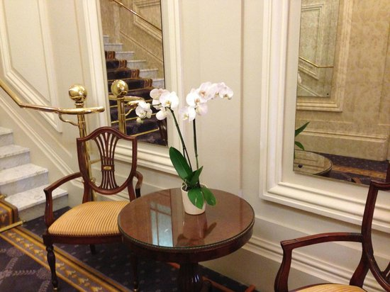 Hotel de Paris Monte-Carlo:                   Phalaenopsis again.                 