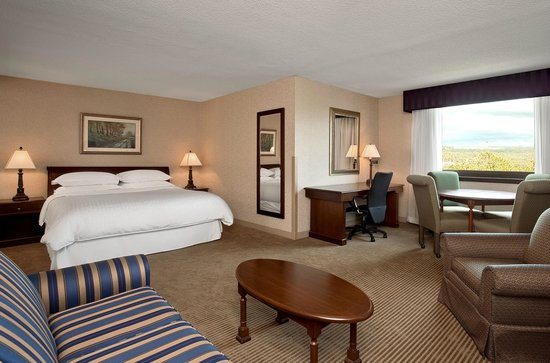 Sheraton Imperial Hotel and Convention Center: King Suite Guestroom