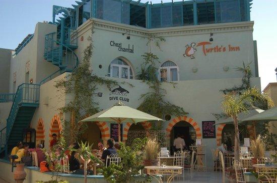 Turtle's Inn