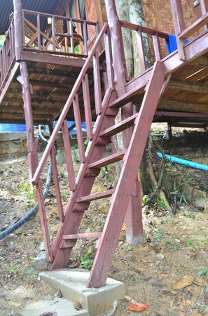 Phi Phi Power Beach Resort:                                     The steps leading to our hut.  Looks like steps leading to a